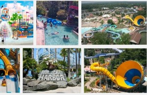 Hurricane Harbor Bail Bonds